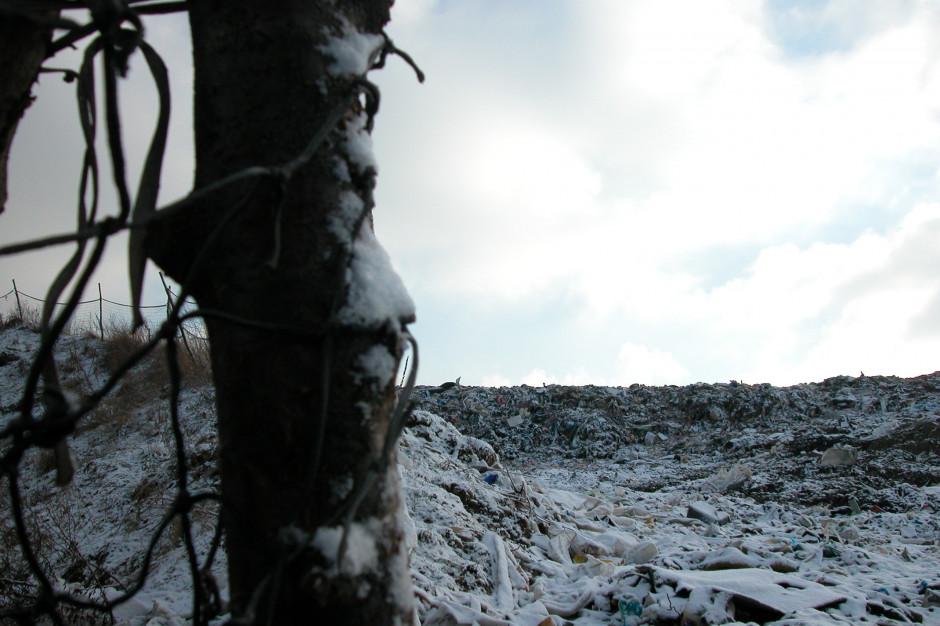 Eurostat: Polska wytwarza relatywnie najmniej śmieci na osobę w UE