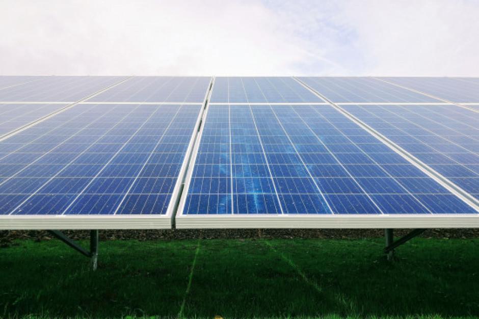 Dino: panele fotowoltaiczne w centrach dystrybucyjnych i na dachach 400 marketów