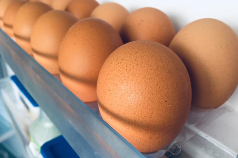 Największy producent w Europie Północnej rezygnuje z jaj klatkowych