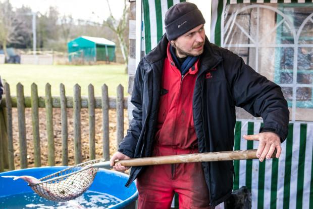 Lewica chce ustawowo zakazać sprzedaży żywych ryb w Polsce