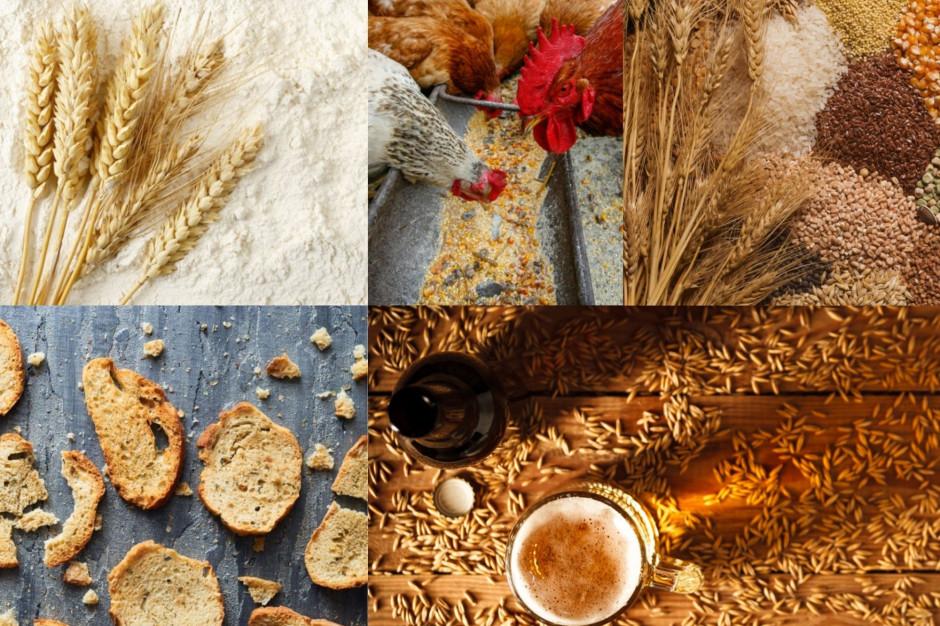 Ceny zbóż wzrosły. Co zdrożeje?