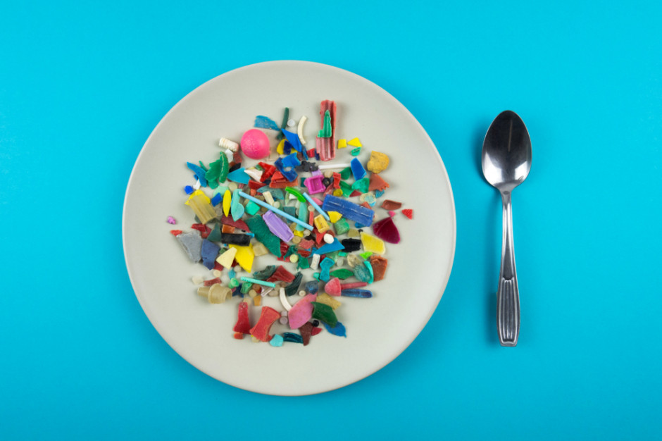 Mikroplastik to siedlisko patogenów