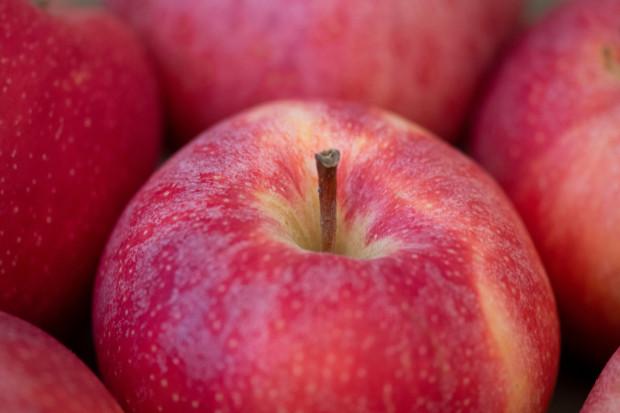 Jak nowe obostrzenia wpłyną na handel jabłkami?