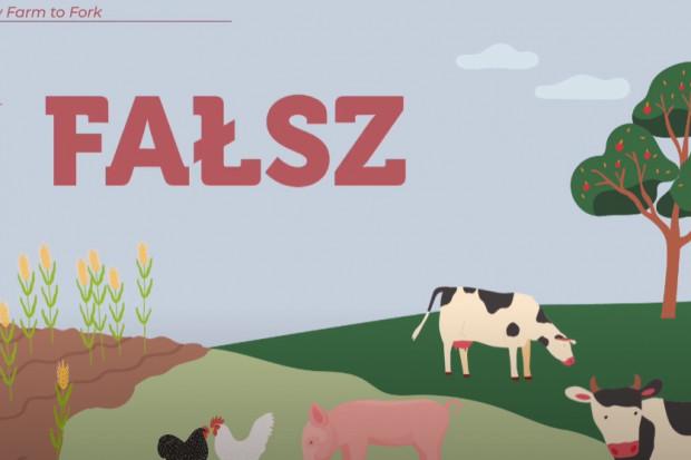 """Branża mięsna: Strategia """"Od pola do stołu"""" do poprawki (wideo)"""