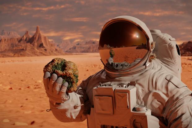 Roślinność na Marsie będzie możliwa