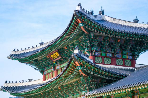 Korea Południowa bije rekordy w eksporcie drobiu