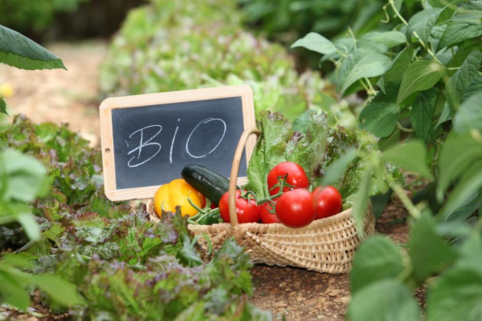 Rolnicy we Francji blokują drogi, problemem żywność ekologiczna
