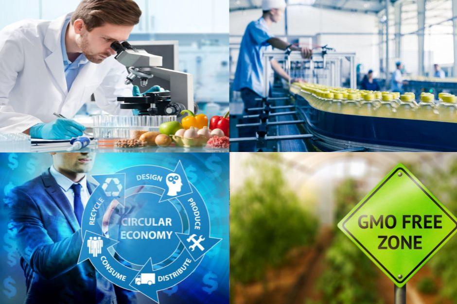 Krajowy Plan Odbudowy szansą dla branży spożywczej