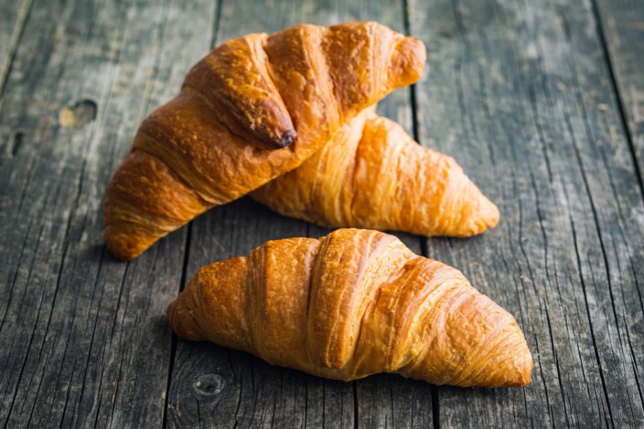 Croissant na drzewie przeraził mieszkańców Krakowa