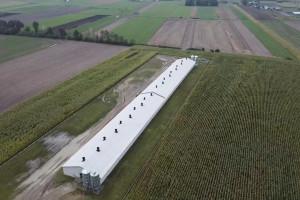 Zdjęcie numer 1 - galeria: Gobarto chce uruchomić 14 nowych hodowli w 2021