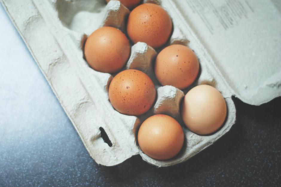 Branża chce rozmawiać z sieciami o decyzjach w sprawie jaj