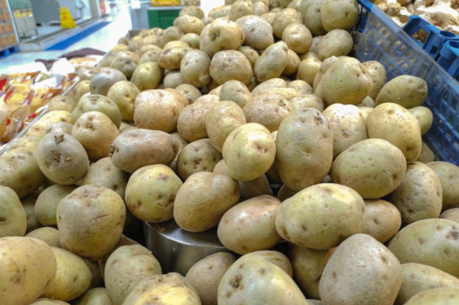 GUS: o 5,3 proc. wzrosły w marcu ceny produktów rolnych rdr