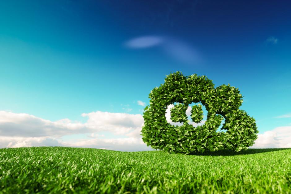 Lidl planuje redukować i kompensować emisję CO2