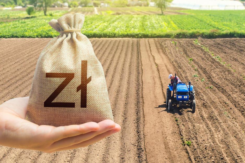 Ardanowski: potrzebne większe środki na rozwój obszarów wiejskich