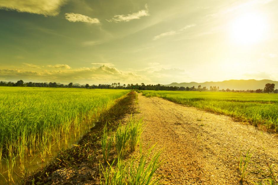 30.04 wchodzą przepisy przedłużające zakaz sprzedaży ziemi SP