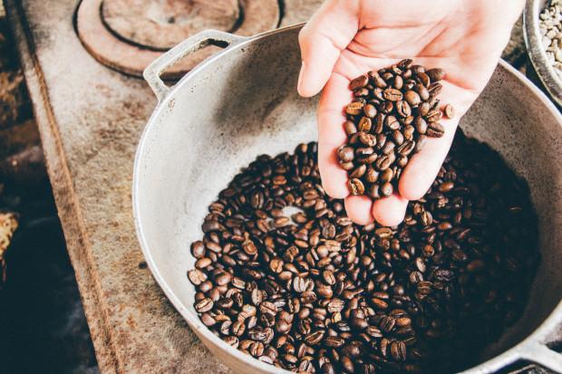 Stenophylla zmieni rynek kawy? Smakuje jak Arabica
