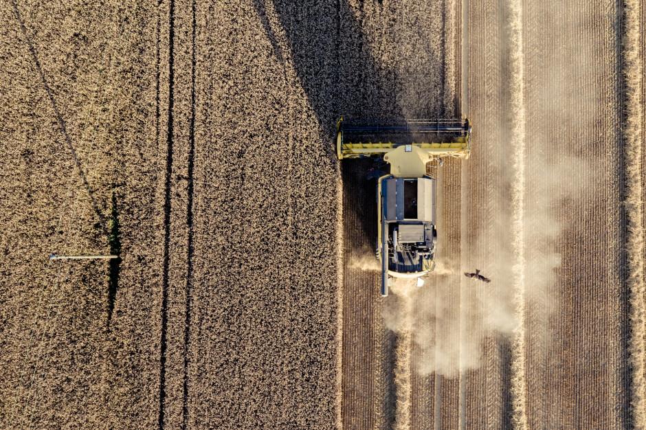 PIE: W 2020 roku zwiększyła się szara strefa w rolnictwie