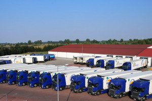 Eksporterzy żywności bez systemowego wsparcia