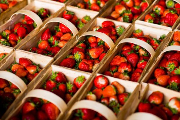 Wysokie ceny truskawek utrzymają się nawet do czerwca