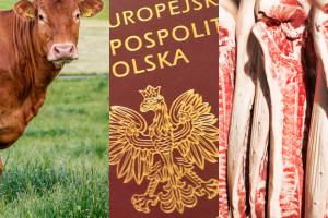 KOWR: Pilotaż paszportyzacji żywności jeszcze w 2021