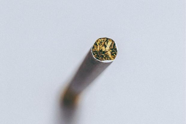 KAS przejmuje nielegalny tytoń na Dolnym Śląsku i w Wielkopolsce