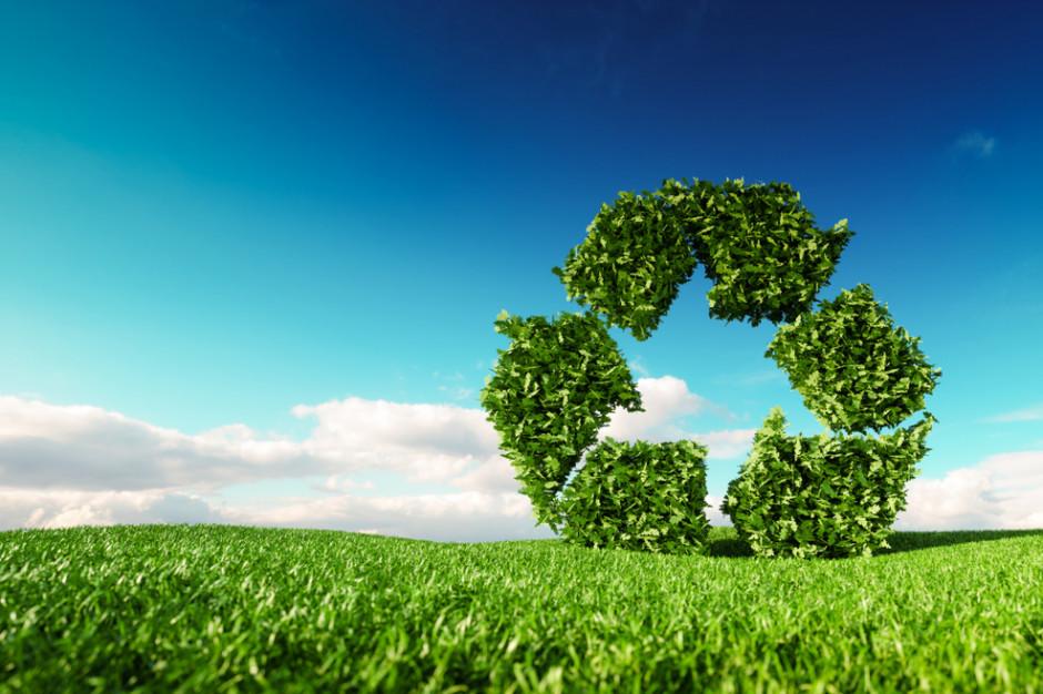 Ochrona środowiska: 4 strategie Biedronki