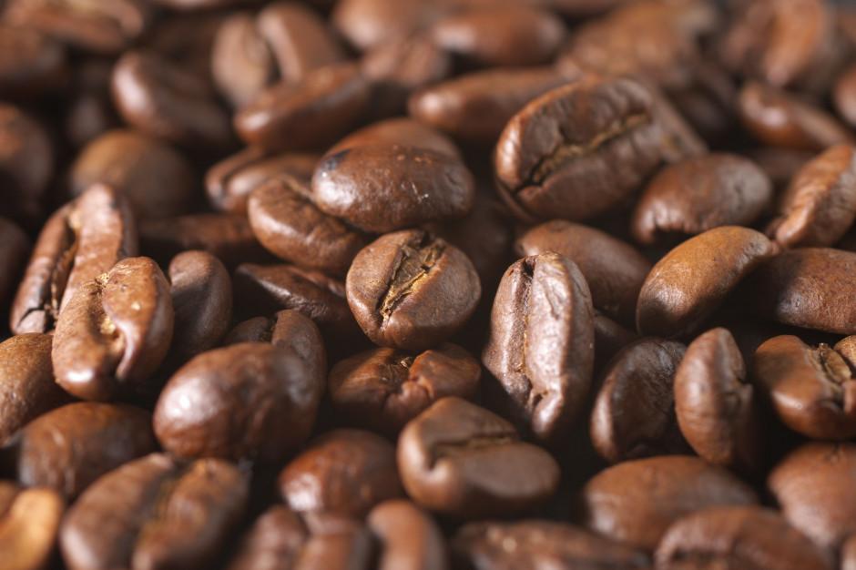Kawa na giełdach najdroższa od ponad 4 lat