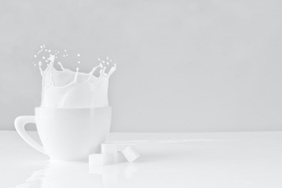 Skup mleka: cena utrzymuje się blisko historycznego maksimum