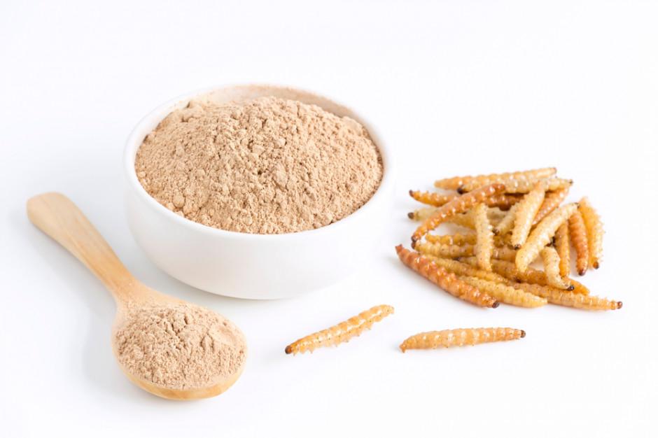 Producent białka z owadów chce zwiększyć sprzedaż o 300 proc.