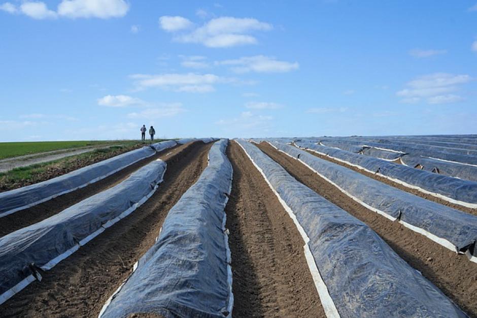 Rusza drugi nabór w programie dot. usuwania folii rolniczych
