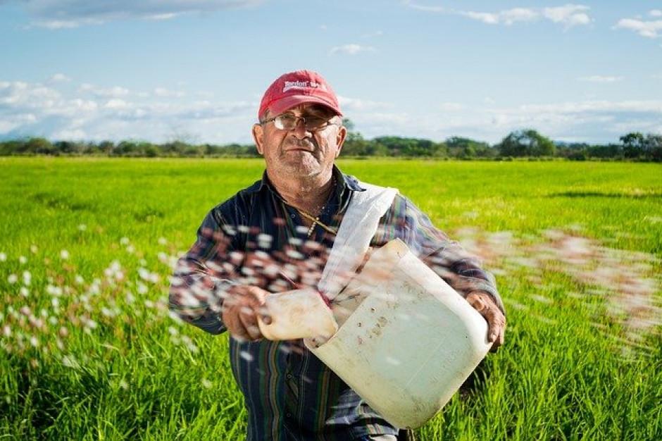 W 2020 roku rolnikom żyło się lepiej