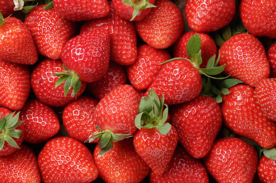 Polska produkuje, ale też i eksportuje truskawki