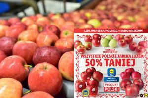 Lidl odkupił od sadowników zapasy ubiegłorocznych jabłek