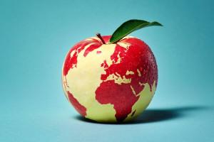 Kaufland publikuje swój pierwszy raport zrównoważonego rozwoju