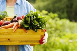 Rada ds. Rolnictwa zajmie się perspektywami rolnictwa ekologicznego