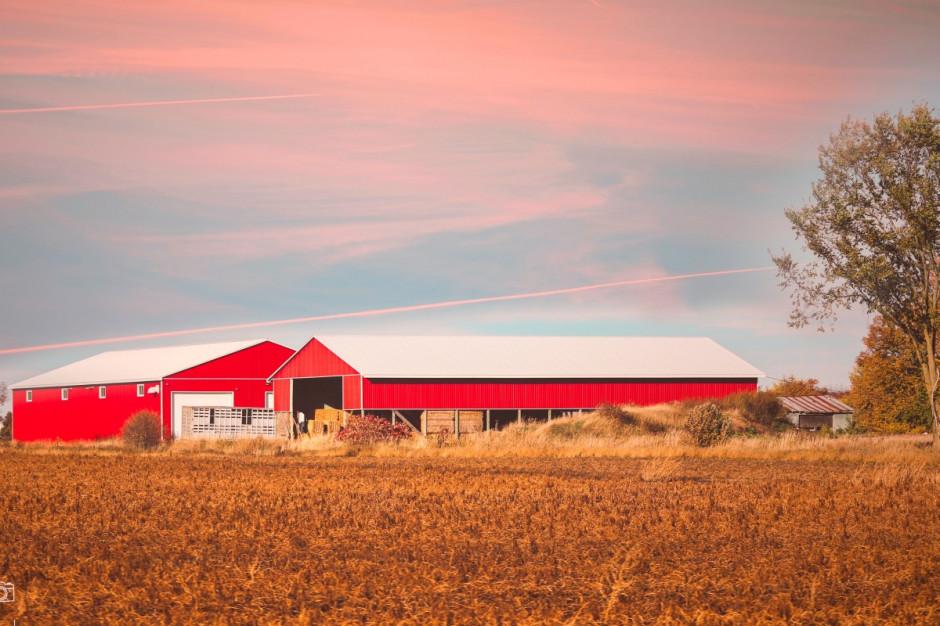 Rusza wsparcie na modernizację gospodarstw