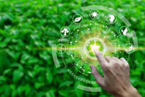 Rolnictwo zrównoważone może osiągnąć wartość 64,6 mld zł