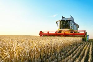 Ostatnie dni na złożenie wniosków m.in. ws. premii dla młodych rolników