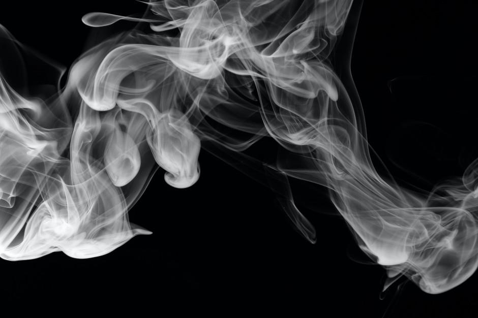 Szczecin: 8 osób oskarżonych o nielegalną produkcję tytoniu