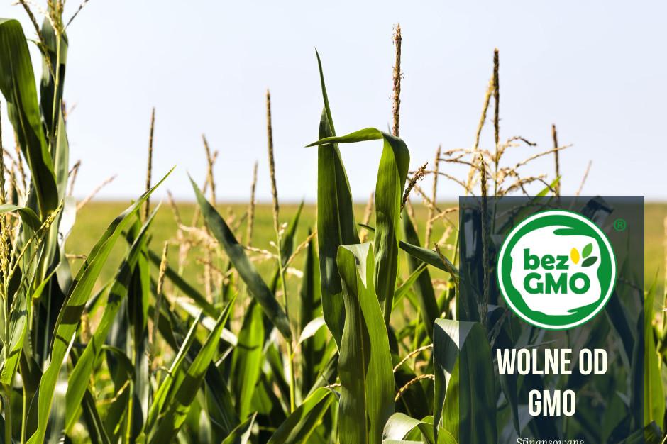 Coraz więcej mleczarni przechodzi na produkcję bez GMO