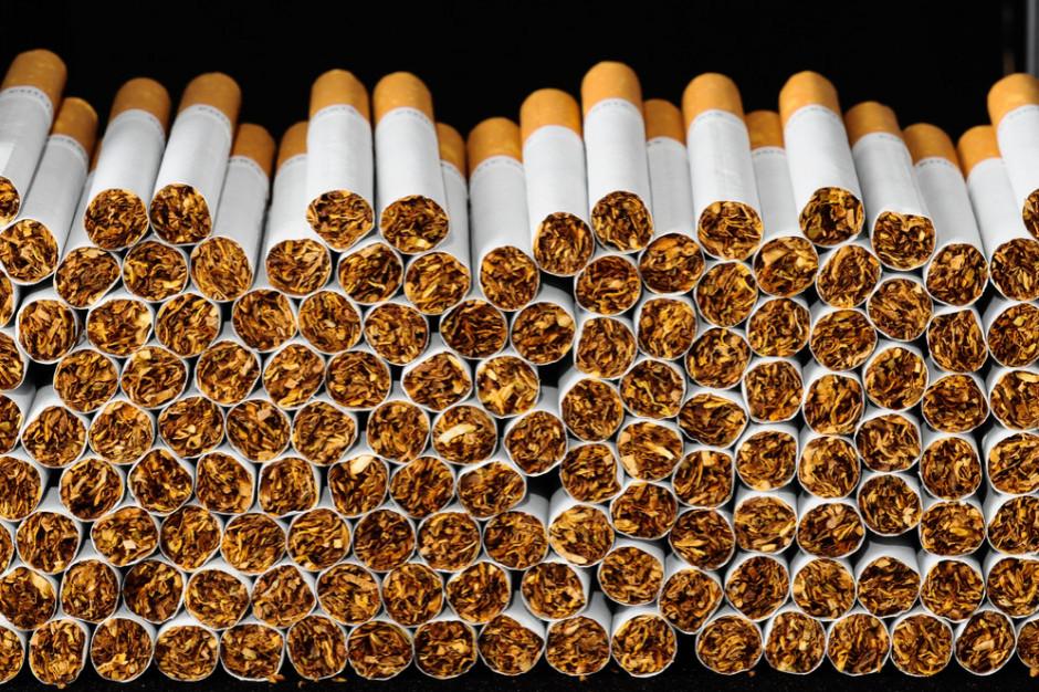 121 tysięcy sztuk nielegalnych papierosów w pudełkach na pizzę