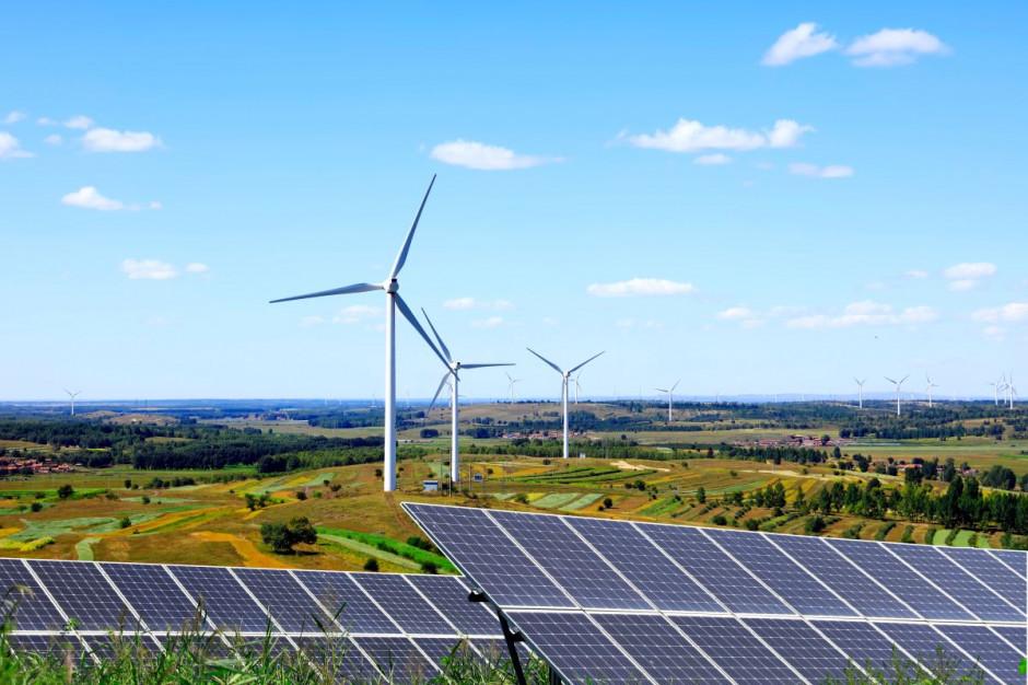 Niemal 80 proc. Polaków chciałoby energii z OZE
