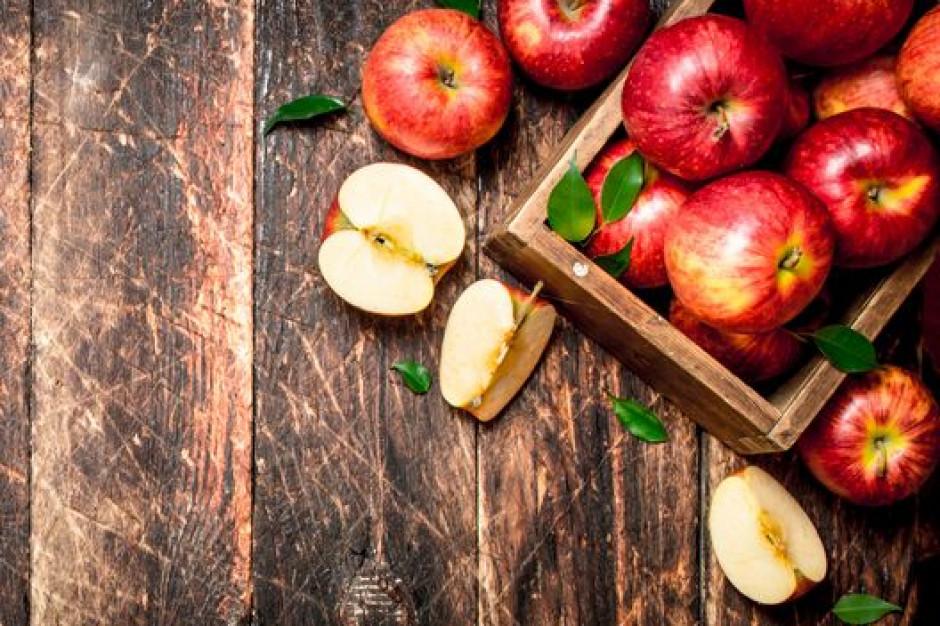 Ardanowski o optymalnej cenie kilograma jabłek w skupie