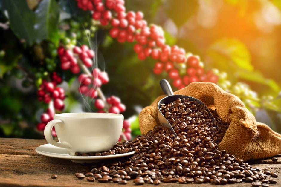 Co kształtuje ceny kawy? Giełdy, aukcje oraz efekt motyla (wideo)