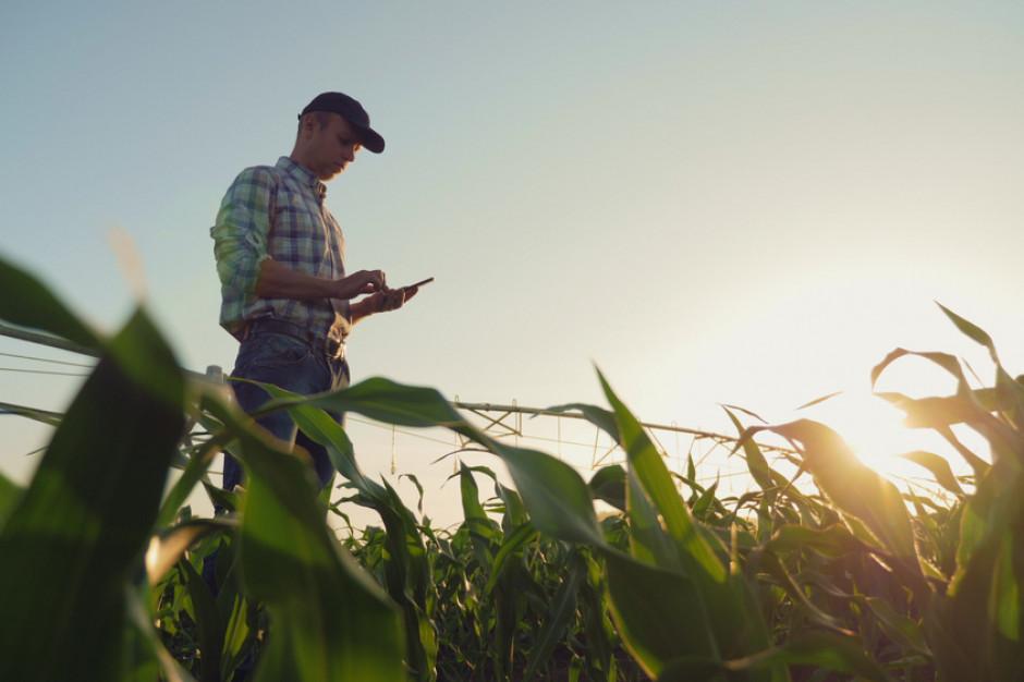 Holenderscy rolnicy mają możliwość osiedlenia się w Surinamie