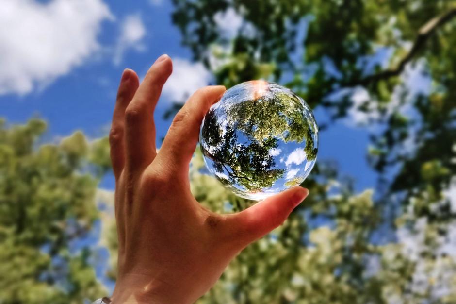 Polacy chcą bardziej ekologicznych sieci handlowych (raport)