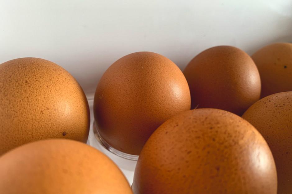 Sanepid ostrzega o salmonelli na skorupkach jaj z Biedronki