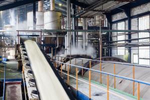 ZPC: najwyższa produkcja cukru od trzech lat