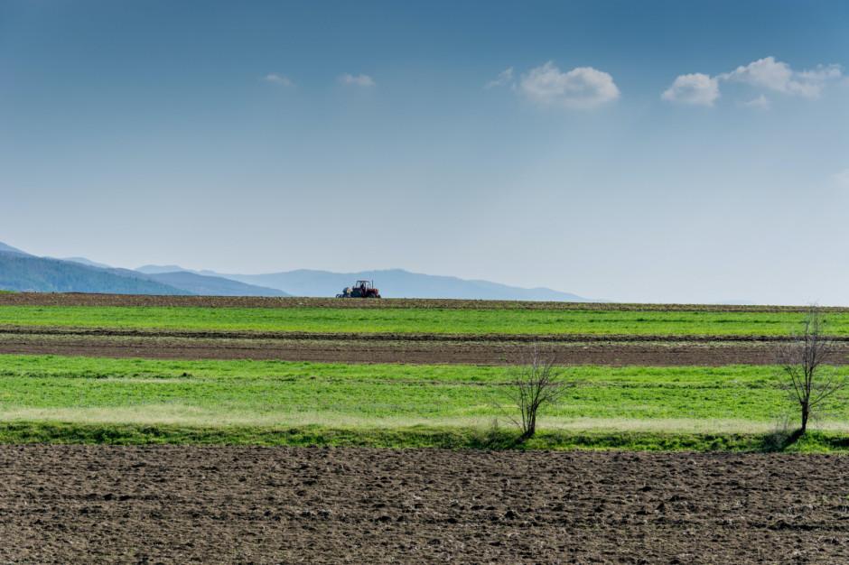 Polska może zostać liderem rolnictwa zrównoważonego w Europie