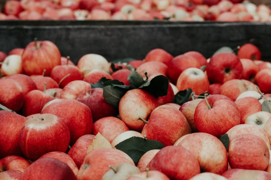 Ceny owoców mogą wzrosną w kolejnych miesiącach